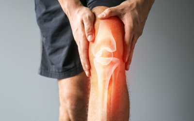 What is the Meniscus?